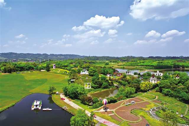 重庆市园林绿化服务中心 发挥职能优势 助力乡村振兴